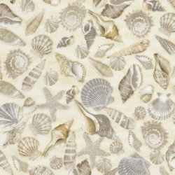 Timeless Treasures Beach - C5353 Col.Shells