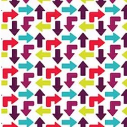Zoom 241/3 Arrows from Fabric Freedom
