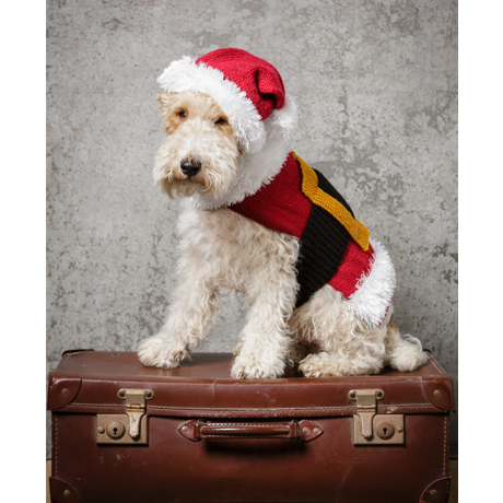 Stylecraft 9310 Santa Dog Coat and Hat in Special DK - Click Image to Close